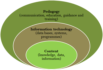 The library's fields of action can be described as content, information technolofy and pedagogy