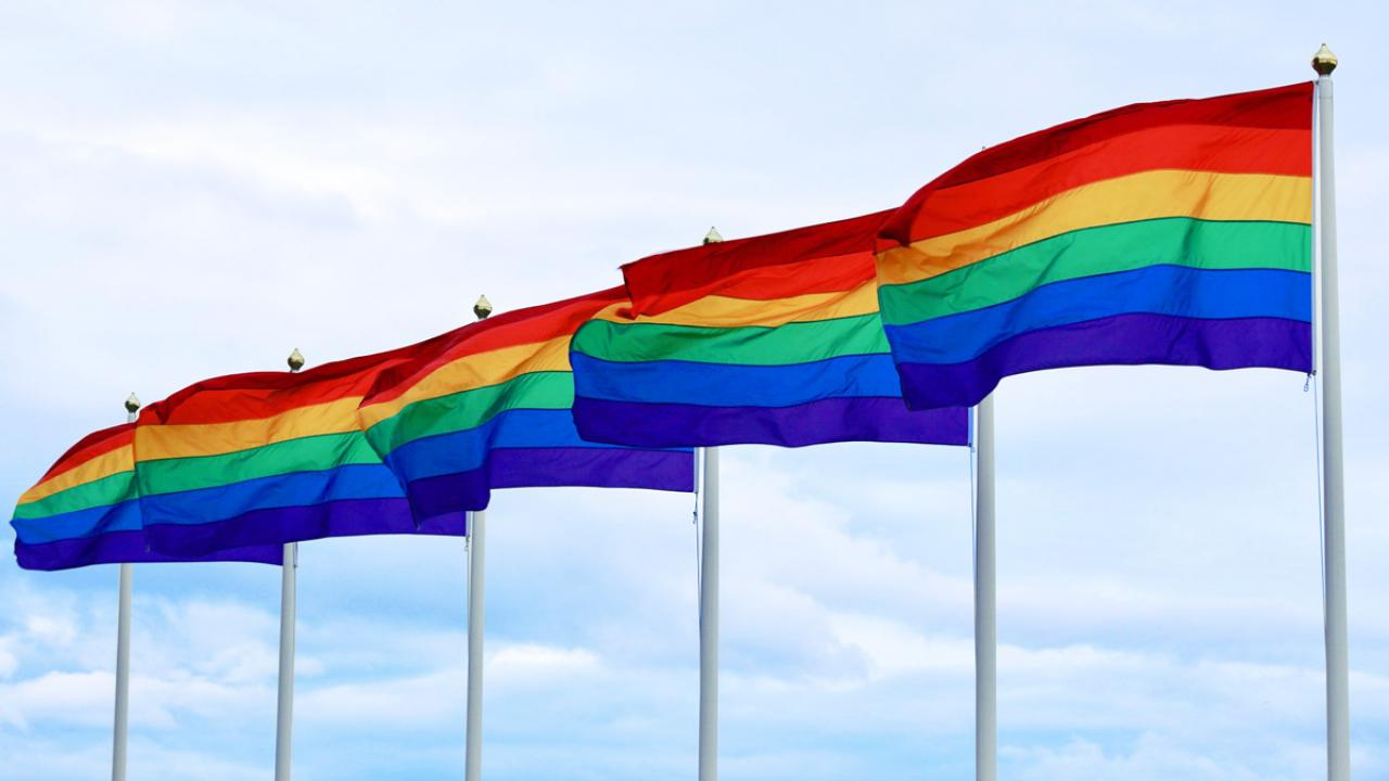 A row of pride flags waving in the wind