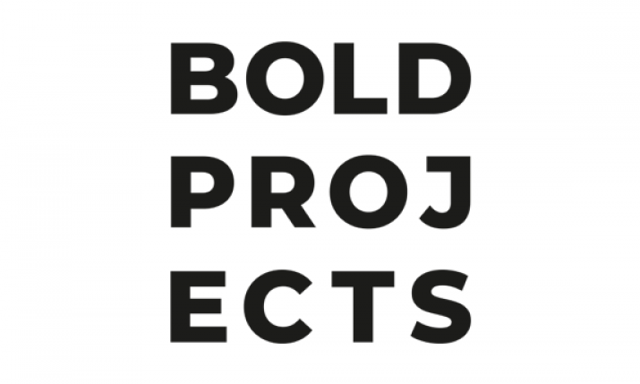 Bold Projects logo