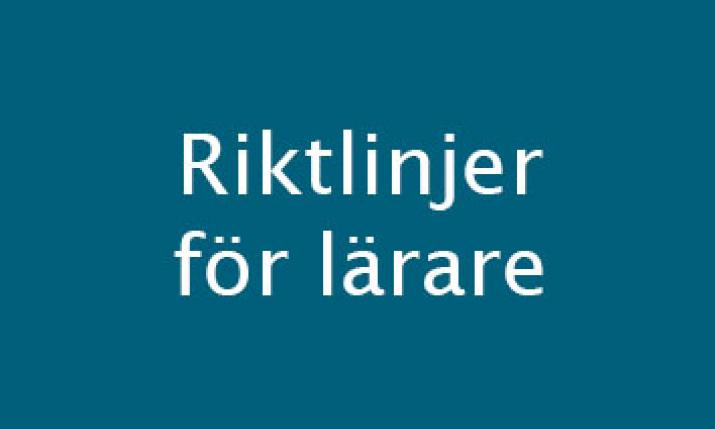 riktlinjer_for_larare.jpg